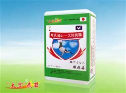 日本太空腺病毒鸽药
