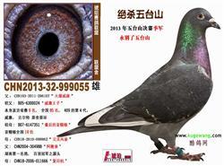 北京市大宁山庄鸽棚出租。