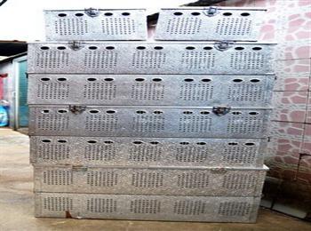 好消息:欧洲进口双层铝合金鸽笼10只装