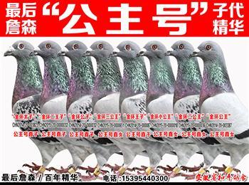 """梦幻145/詹森""""公主号""""子代/金环99/兆尊小苍白/秃头199/公牛55/苏维八关王"""