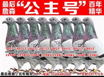 """梦幻145/兆尊小苍白/詹森""""公主号""""子代/荷比冠军/帝王冬日/百万巴龙/公牛55/苏维八关王"""