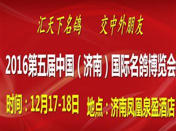 2016第五届中国(济南)国际名鸽博览会