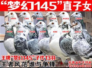 """梦幻145/兆尊小苍白/詹森""""公主号""""荷比874/奇迹32/百万巴龙/金环99/帝王冬日"""
