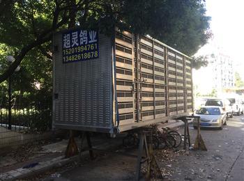 上海浦东可装6000羽训飞笼转让