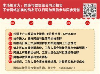 中国兆尊馆独家网络拍卖会最后一期