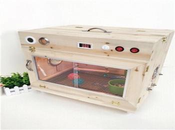 众捷控温育雏箱+赛鸽专用幼鸽乳,赠送手养工具