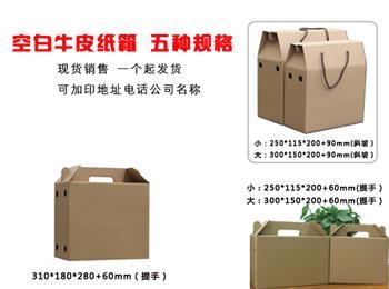 供应空白牛皮纸箱高强瓦楞纸一次模压成型