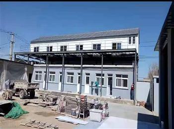 北京金马鸽业拆迁搬家多羽种鸽出售