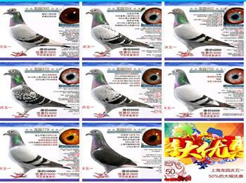 上海龙园庆祝五一国际劳动节,大幅优惠,节后恢复原价,敬请挑选!!!