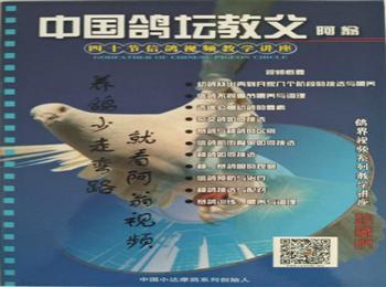 阿翁40节信鸽视频讲座光碟