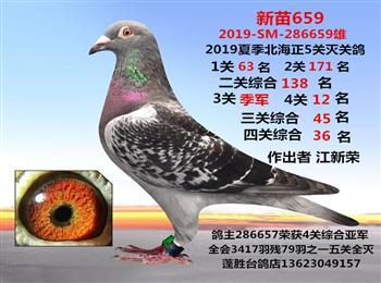 刚上船2019夏季北海正5关灭关台鸽微信电话13623049157