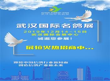 武汉鸽展要来了,12月14-15日与广大鸽友相约