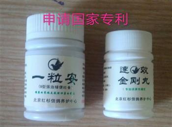 """""""速效金刚丸""""专治拉黄色稀便,""""药好看疗效。甩食拉绿便就用""""一粒安"""",北京红杉信鸽养护中心"""